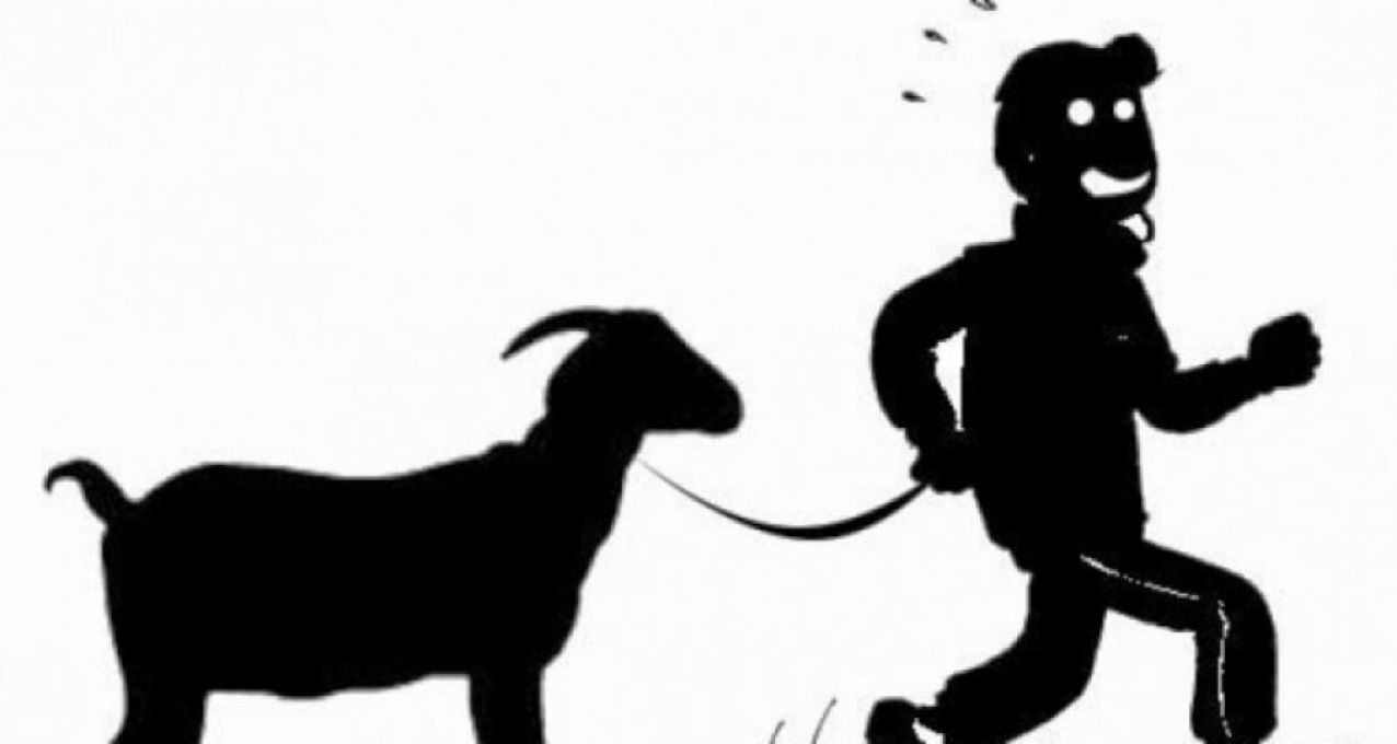 Ada Apa.! Polsek Tamalatea Belum Amankan Pencuri Kambing di Tamanroya