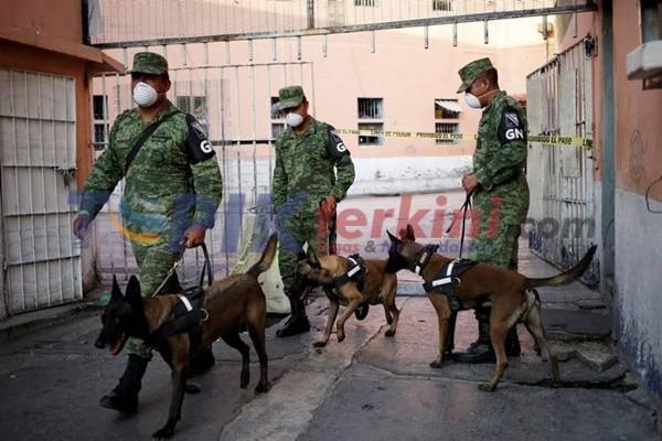 Anjing Polisi mencari Makam tersembunyi di Penjara Yang Terkenal Paling Kejam di Meksiko