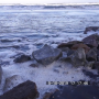 Video: Limbah Tambak Udang di Desa Palajau dibuang ke Laut dan Mengeluarkan bau tak Sedap