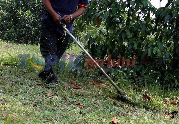 Petugas Pemotong rumput di Melaka Temukan delapan bagian tubuh manusia