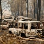 Fakta kunci tentang kebakaran hutan Australia