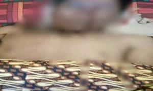 Ditinggal Istri ke Pesta, Lelaki di Bone ditemukan Tewas diduga Jatuh dari pohon Kelapa