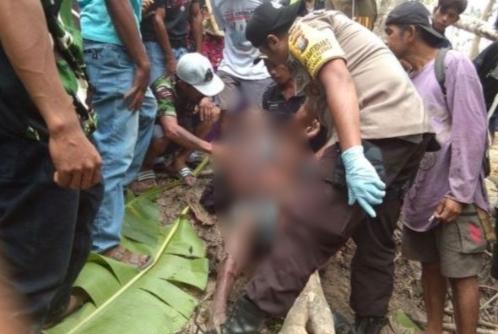 Diduga Terlilit dan Terjerat Tali Sapi, Mayat Lelaki Paruh Baya ditemukan Dipersawahan