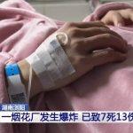 7 Orang tewas dalam Ledakan pabrik kembang api di China