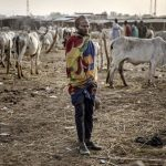 Gerilyawan Boko Haram membunuh 19 penggembala ternak Nigeria dalam bentrokan