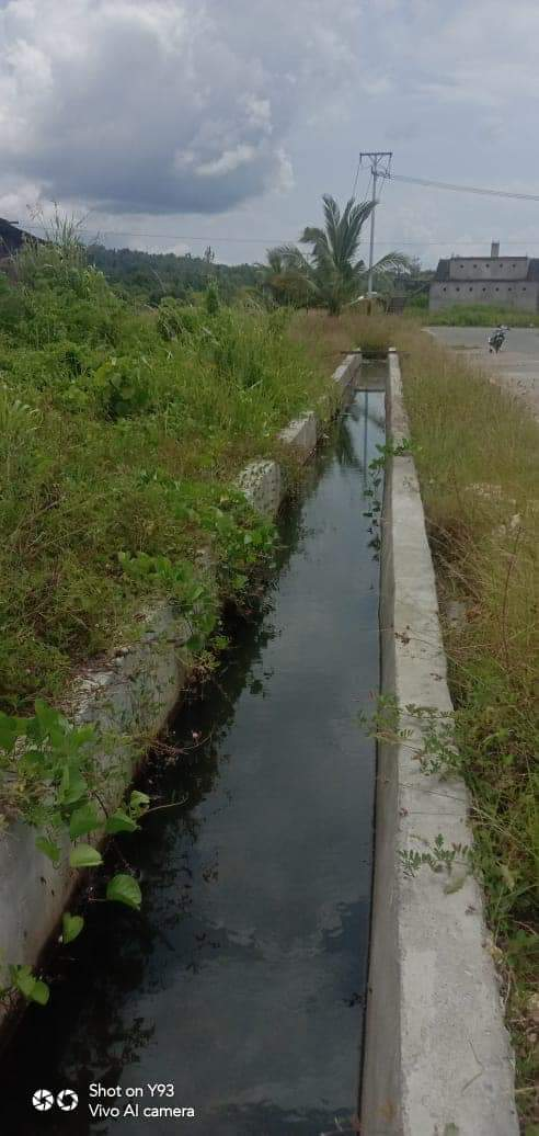 Habiskan Ratusan Juta Rupiah, Proyek Drainase di Sulap Jadi Kolam Ikan