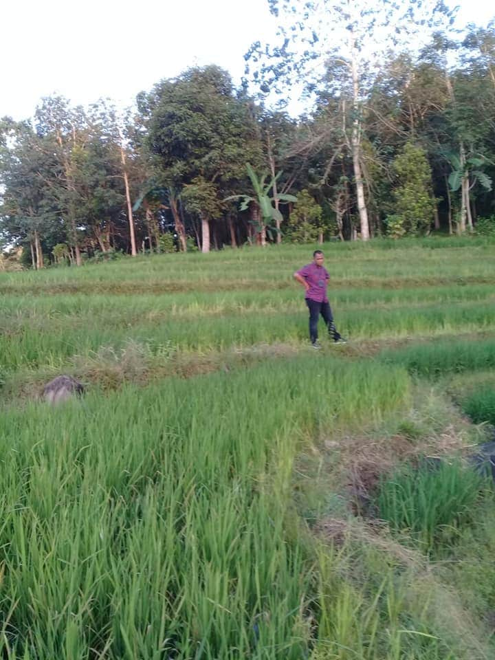 Sehari Setelah Kedatangan Evi Binti Rasyid di Polres Bulukumba, Kanit Tahban Langsung Tinjau Lokasi