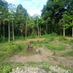 Tanah Milik Darisman Bin Zainuddin Belum di Bayarkan Lunas Oleh Toko Gunung Sari, Ada Apa?