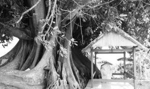 Makam Raja-raja mandar potensi wisata tersembunyi di sulbar