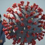 China menemukan virus corona pada kemasan daging sapi Brasil
