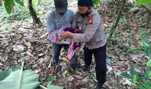 Penemuan mayat bayi didalam kantong plastik Gegerkan warga di Bone