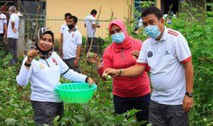 Lapas Kelas IIA Watampone Gelar Panen Raya Sayur Hasil Kebun Warga Binaan