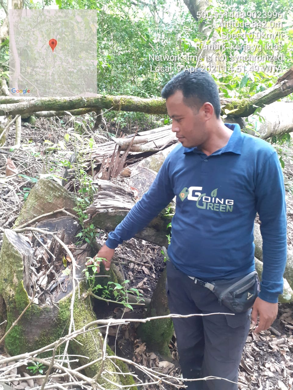 Unit Tipiter Sat Reskrim Polres Lombok Timur Amankan Kayu Ilegal di Pelabuhan Kayangan