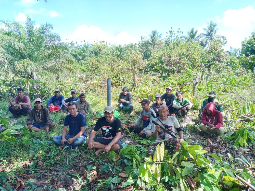 PPKTD, Pemerintah Desa Laeya Manfaatkan Lahan Kosong ditengah Pandemi Covid-19