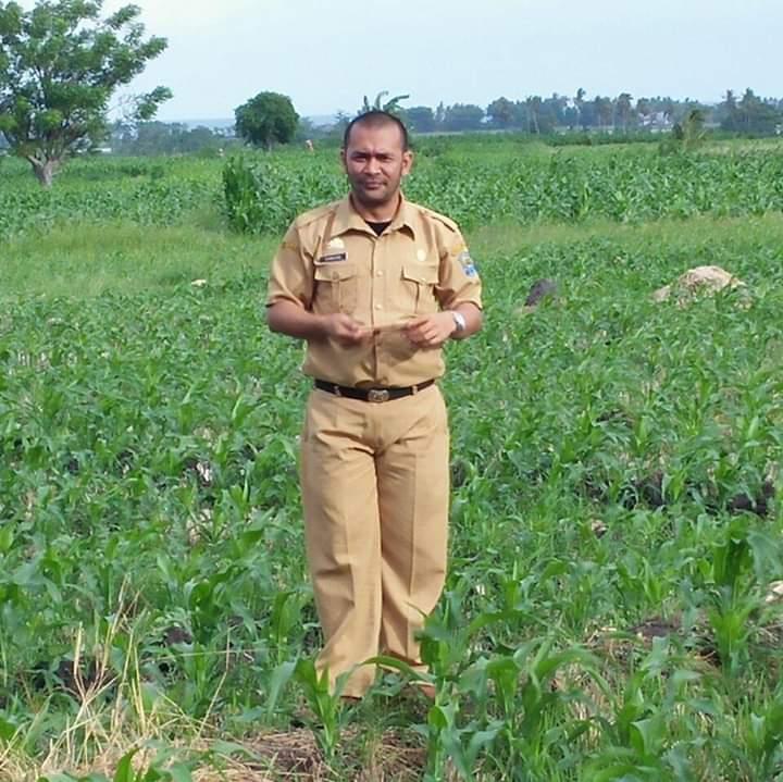 Bidang Tanaman Pangan Dinas Pertanian Kabupaten Jeneponto tinjau lahan pertanian terdampak banjir
