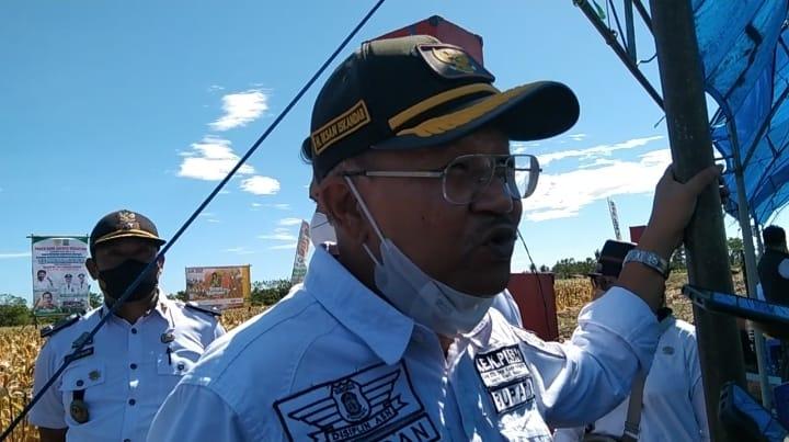 Dinas Pertanian Kabupaten Jeneponto Lakukan Panen Raya Jagung Nusantara Bersama Mentan