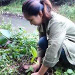 Sambut Sumpah Pemuda, SAPA Sulut Sukseskan Penanaman Pohon